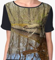 Hornbeam forest and swamp Chiffon Top