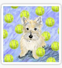 Miss Caroline the Cairn Terrier is Obsessed About Fetching Tennis Balls Sticker