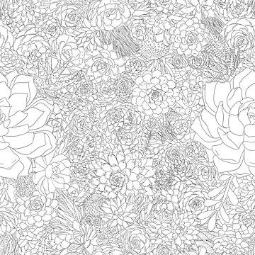 Succulents! (Black & White) by SachikoKawamura