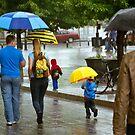 Who Said That Rainy Days Were Sad? by Johanne Brunet