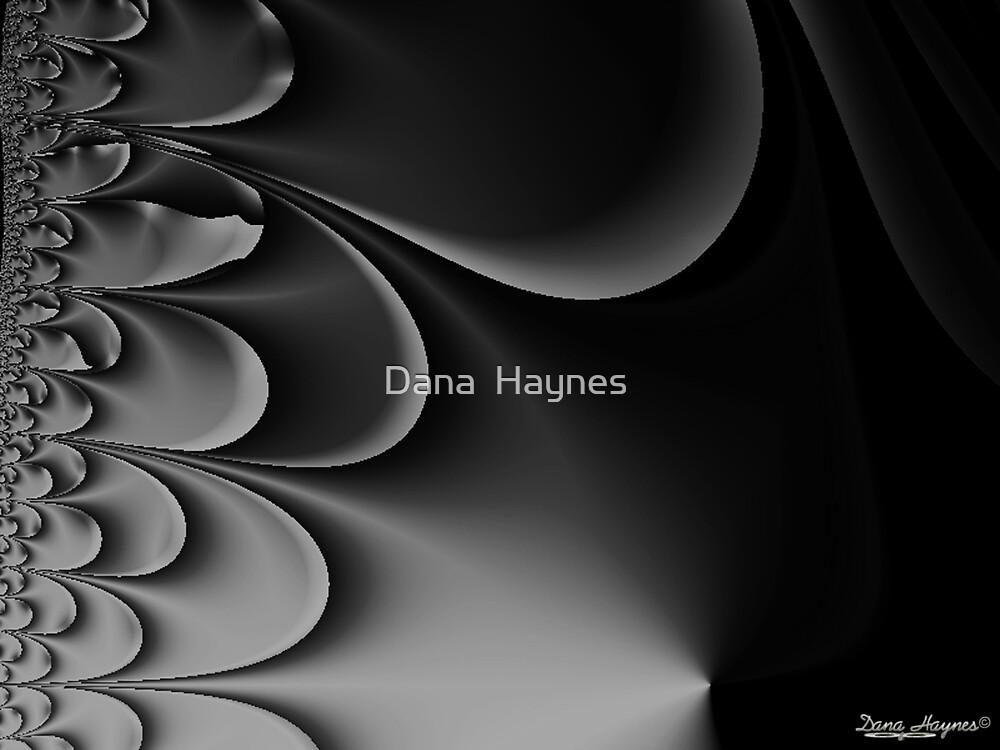 Perfect Thunder by Dana  Haynes