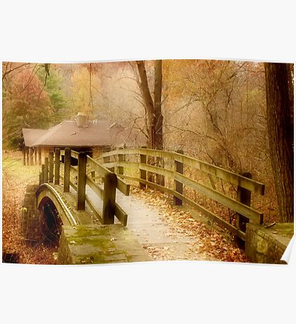 Footbridge in the Forest Poster