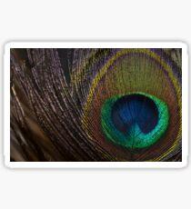 Peacock Close Up: Macro Photography Sticker