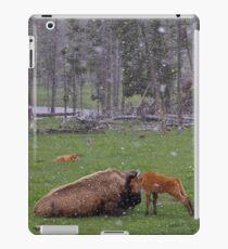 Momma iPad Case/Skin