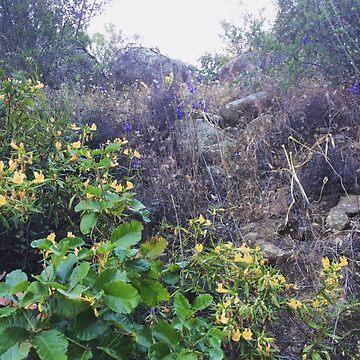 Hillside Flowers by AbbyLevi