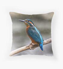 Kingfisher Perch Throw Pillow