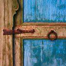 Rustic Old Blue Moroccan Door by Georgina Steytler