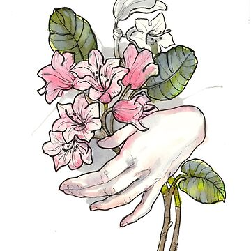 Rhododendron by sarawilson