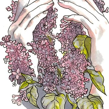 Lilacs by sarawilson