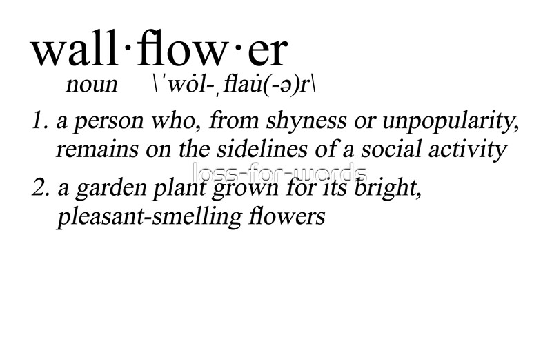 Bildergebnis für wallflower