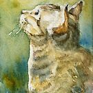 I need a ray of sunshine, Cat watercolor aceo by Almondtree
