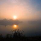 Lakeridge Fog by IanMcGregor
