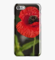 red poppy iPhone Case/Skin