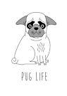 Pug Life by Creative Spectator