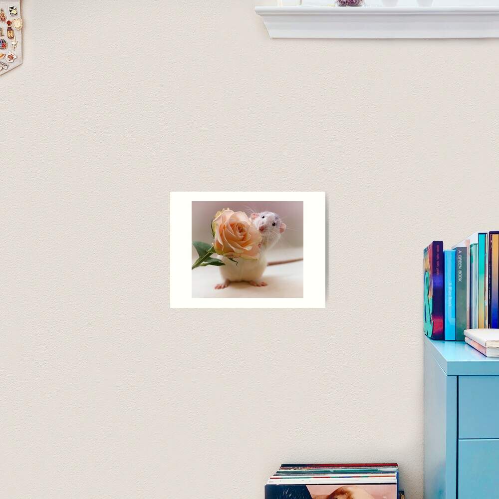A rose for you... Art Print