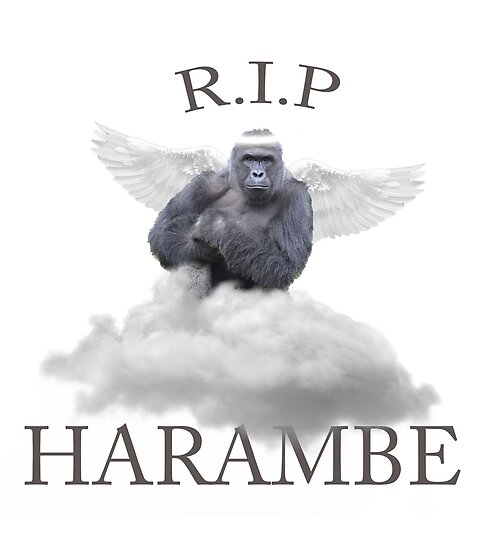 Image result for rip harambe meme
