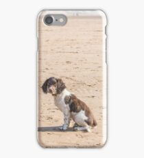 Springer Puppy iPhone Case/Skin
