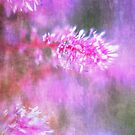 Soft Pink Summer  by Kasia-D