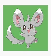 Minccino the Pokemon Photographic Print