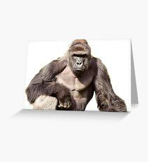 Harambe Greeting Card