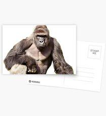 Harambe Postcards