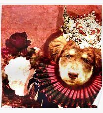 Princess Aussie Poster