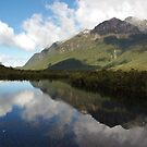 New Zealand reflections by Alison Murphy