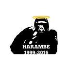 RIP Harambe by lilsamsclub