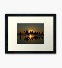 Cable Beach Camels at Sunset Framed Print