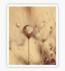 Dandelion - touch of gold Sticker