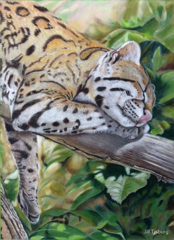 Sleeping Ocelot by Jill Tisbury