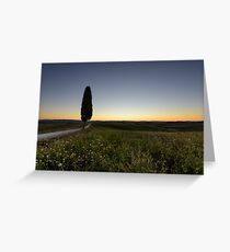 Lone tree before dawn, Val D'Orcia, Tuscany, Italy Greeting Card