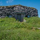 Reproduction of Viking Sod House at L'Anse aux Meadows, NL by Gerda Grice