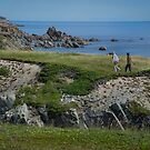 At Cape Bonavista, NL, Canada by Gerda Grice