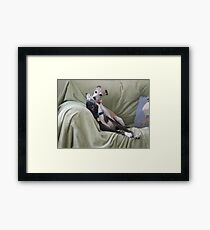A Kiss from Winnie Framed Print
