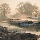 In To The Mystery - Sunrise At White Rock by Gregory J Summers