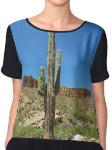 Desert landscape, Arizona Women's Chiffon Top