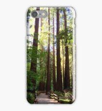Muir Redwoods California iPhone Case/Skin