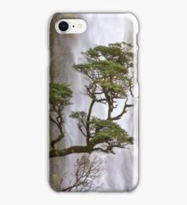 Devils Punchbowl, Arthurs Pass iPhone Case/Skin
