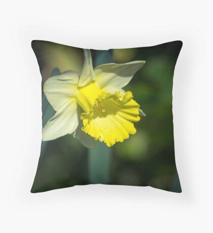A Pretty little Daffodil Throw Pillow
