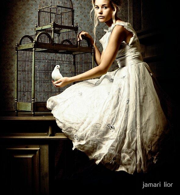 WHITE DOVE by jamari  lior