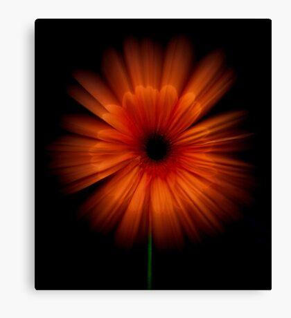 Bloomburst! Canvas Print
