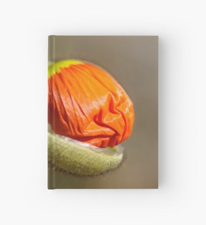 Poppies take off their coats in the sun Hardcover Journal