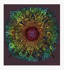 Mandala of Nieve Photographic Print