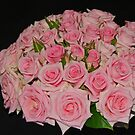 Miniature pink rose posy by Coloursofnature