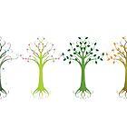 Four Seasons by foxgloves