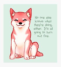 """""""No One Knows What They're Doing"""" Shiba Photographic Print"""