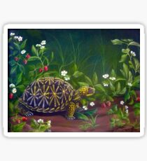 Florida Box Turtle, Strawberries and Blooms Sticker