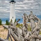 Crisp Point Lighthouse and Driftwood by Kenneth Keifer