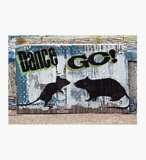Rodent Dance Photographic Print